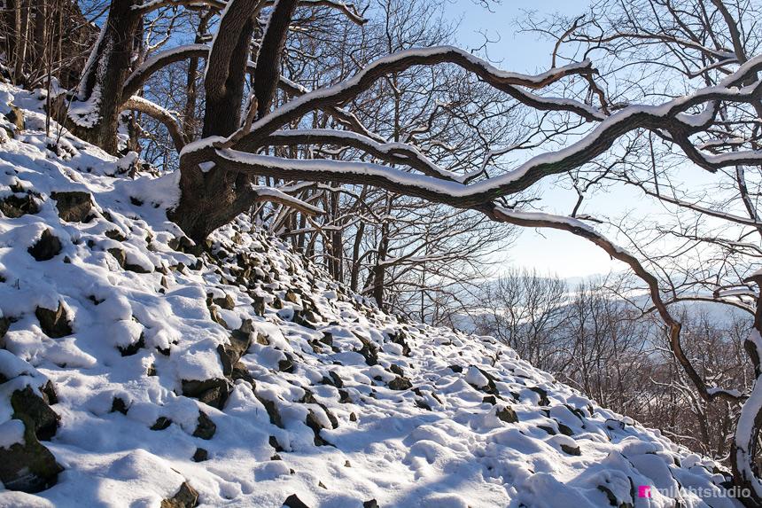 Ostrzyca Proboszczowica zimą