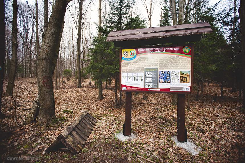 Ścieżka edukacyjna przyrodniczo-kulturowa w Leszczynie