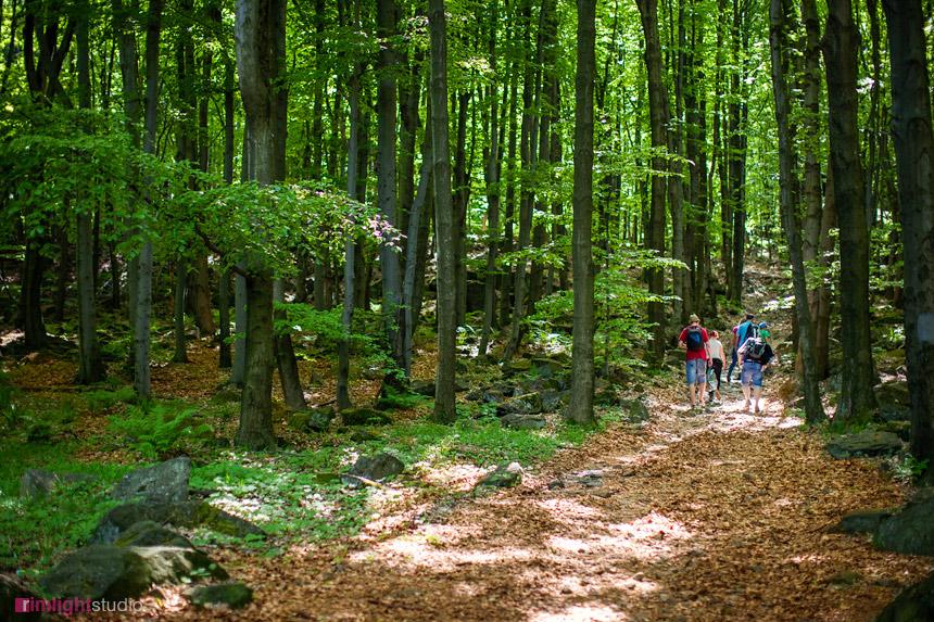 Szlaki turystyczne piesze i rowerowe w Sudetach