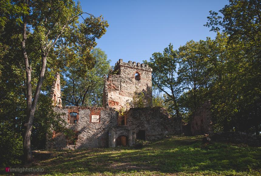 Zamek Lipa