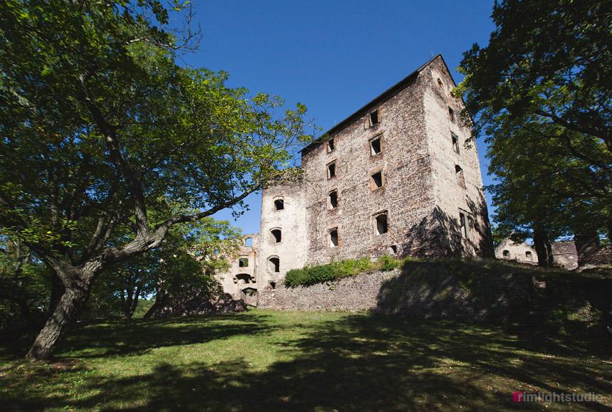 Zamek Świny godziny otwarcia